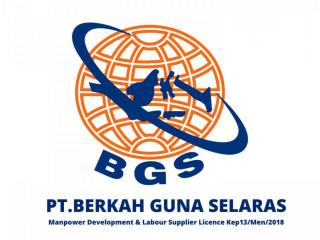 عمالة مهنية وفنية من اندونيسيا